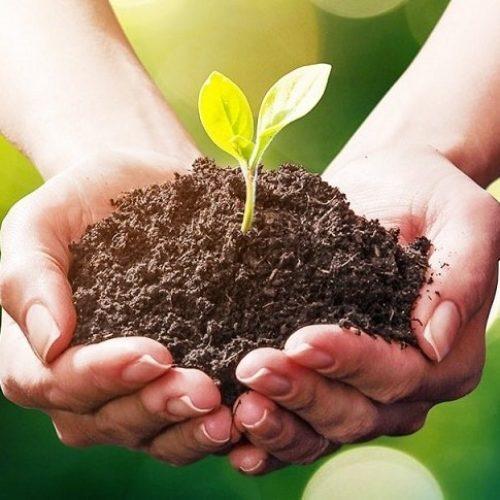 malschersitzmoebel_nachhaltigkeit